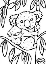 Imprimer le coloriage : Koala, numéro 80e6dd41