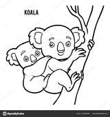 Imprimer le coloriage : Koala, numéro 957be95b