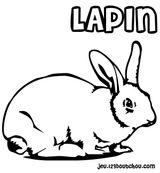 Imprimer le coloriage : Lapin, numéro 5425