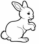 Imprimer le dessin en couleurs : Lapin, numéro 58662