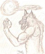 Imprimer le dessin en couleurs : Loup, numéro 23447