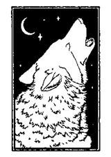 Imprimer le coloriage : Loup, numéro 755082