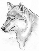 Imprimer le coloriage : Loup, numéro 8490