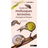 Imprimer le dessin en couleurs : Mollusques, numéro 8d35e65d