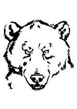 Imprimer le coloriage : Ours, numéro 128705