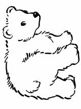 Imprimer le coloriage : Ours, numéro 3650