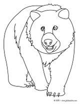 Imprimer le coloriage : Ours, numéro 615759