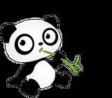 Imprimer le dessin en couleurs : Panda, numéro 108792