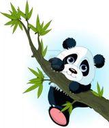 Imprimer le dessin en couleurs : Panda, numéro 121521