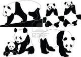 Imprimer le dessin en couleurs : Panda, numéro 193910