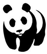 Imprimer le dessin en couleurs : Panda, numéro 519279