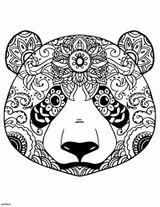 Imprimer le coloriage : Panda, numéro 5e46abb9
