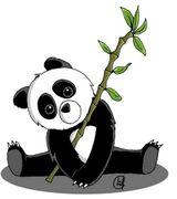 Imprimer le dessin en couleurs : Panda, numéro 626680