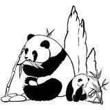Imprimer le coloriage : Panda, numéro 990afb1a