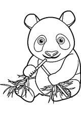 Imprimer le coloriage : Panda, numéro 9ed6fbc9