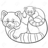 Imprimer le coloriage : Panda, numéro f114f745