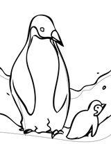 Imprimer le coloriage : Pinguoin, numéro 6c7a00a8