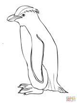 Imprimer le coloriage : Pinguoin, numéro 7c2d0cdc