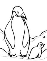 Imprimer le coloriage : Pinguoin, numéro fafbb861