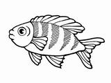 Imprimer le coloriage : Poisson, numéro 4065