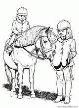Imprimer le dessin en couleurs : Poney, numéro 19501