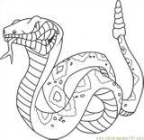 Imprimer le coloriage : Reptiles, numéro 23983