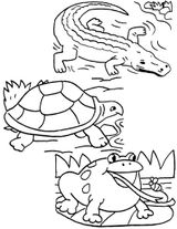 Imprimer le coloriage : Reptiles, numéro 25794