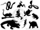 Imprimer le coloriage : Reptiles, numéro 434350