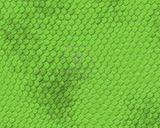 Imprimer le dessin en couleurs : Reptiles, numéro 74222