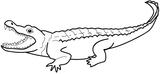 Imprimer le coloriage : Crocodile, numéro 171266