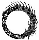 Imprimer le coloriage : Serpent, numéro 24054
