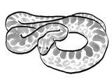 Imprimer le coloriage : Serpent, numéro 56075