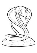 Imprimer le coloriage : Serpent, numéro b6845750
