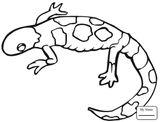Imprimer le coloriage : Reptiles, numéro a6f7ed3b