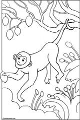 Imprimer le coloriage : Singe, numéro 289805