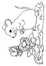 Imprimer le coloriage : Souris, numéro 170908