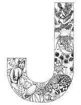 Imprimer le coloriage : Alphabet, numéro 423045