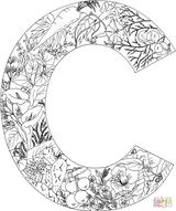 Imprimer le coloriage : Lettre c, numéro 635a4409
