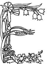 Imprimer le coloriage : Lettre e, numéro 268416