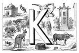 Imprimer le coloriage : Lettre k, numéro 167855