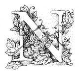 Imprimer le coloriage : Lettre n, numéro 148151