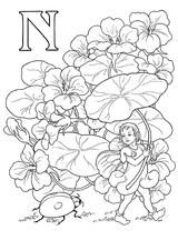 Imprimer le coloriage : Lettre n, numéro 52620