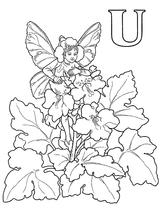 Imprimer le coloriage : Lettre u, numéro 52703