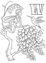 Imprimer le coloriage : Lettre w, numéro 52724
