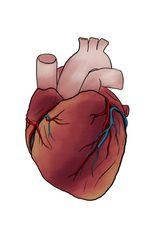Imprimer le dessin en couleurs : Coeur, numéro 862df8c