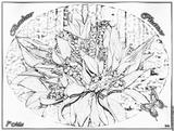 Imprimer le dessin en couleurs : Evènements, numéro 57387