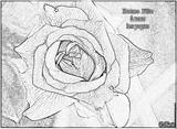 Imprimer le coloriage : Fête des pères, numéro 66445