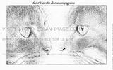 Imprimer le coloriage : Saint-Valentin, numéro 378025