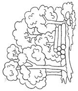 Imprimer le coloriage : Nature, numéro 17204