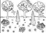 Imprimer le coloriage : Nature, numéro 21865